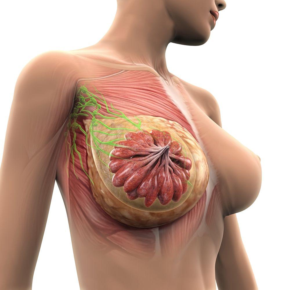 Vouchere de la Primărie pentru testarea pacientelor care au cancer la sân