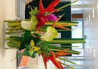 O plantă pe birou îţi poate influenţa starea de spirit