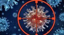Cum se realizează înfometarea celulelor canceroase. Eliminarea acestor alimente din dietă cresc eficiența tratamentului anticancer