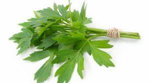 Susține sănătatea colonului, antiinflamator, calmant al stomacului. Beneficiile uimitoare pentru sănătate ale uneia dintre cele mai iubite plante aromatice
