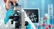Un cercetător a transformat celulele cancerigene în celule normale