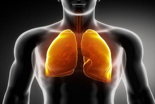 10 plante care curăță plămânii și combat infecțiile respiratorii