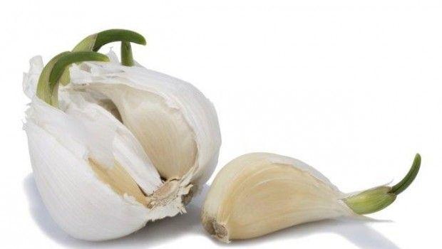 Ce trebuie să știi despre usturoiul încolțit