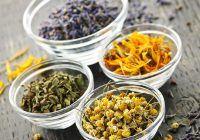 Cinci avantaje ale terapiei cu plante