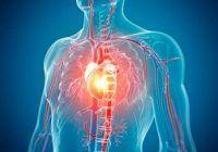 Ce legătură are nivelul scăzut al fierului în organism cu apariția și agravarea bolilor de inimă?