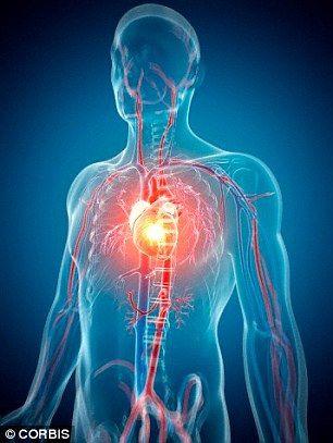 Experții au descoperit secretul tinereții veșnicei. La ce aliment să renunți ca să nu faci boli de inimă și să trăiești mult?