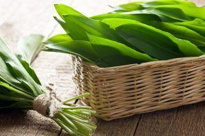 Plantele cu frunze verzi, un adevarat elixir! Beneficii nemasurate ale consumului de clorofila