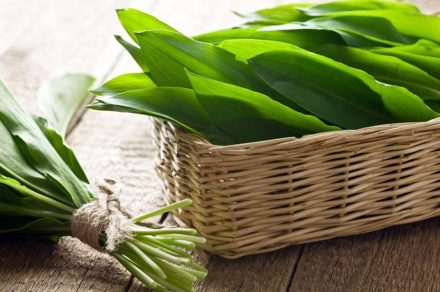 Plantele cu frunze verzi, un adevărat elixir! Beneficii nemăsurate ale consumului de clorofilă