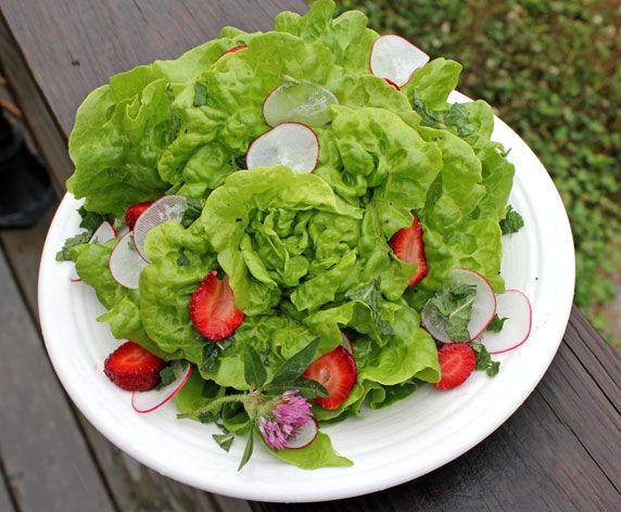 Salata verde, alimentul-minune al primăverii
