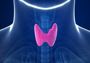 Simptomele fiecarei boli de tiroida in parte exemplificate vizual cu primele thyroji (emoticoane ale tiroidei) din lume