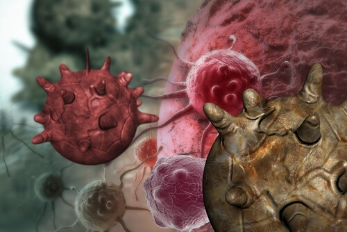 Ce sa mananci pentru a reduce riscul aparitiei cancerului