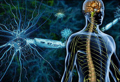 Scleroza multiplă provocată de nivelul scăzut al unei vitamine