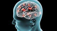 Regenerarea neuronilor, între vis și realitate