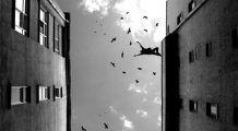 Ce fel de comportamente prezic încercările de sinucidere