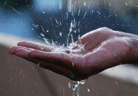 Nici nu bănuiați. Ce puteți face cu apa de ploaie?