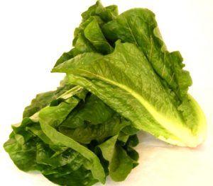 salata-romana