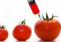 """""""Nu te joci cu mâncarea unui popor, cu siguranța lui alimentară!"""", trage semnalul de alarmă un doctor în Horticultură îngrijorat de noile experimente agricole"""