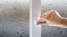 Umiditatea crescută din casă te poate îmbolnăvi. Câștigă un aparat care ține mucegaiul la distanță și menține o atmosferă sănătoasă