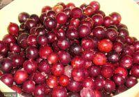 """Sunt pline de vitamine și de fibre dar cu puține calorii. Fructele care """"topesc"""" grăsimea și combat hipertensiunea și guta"""