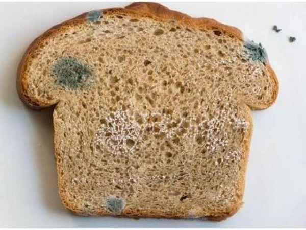 Ce poți să pățești de la pâinea mucegăită și care e cea mai bună metodă de depozitare a pâinii?