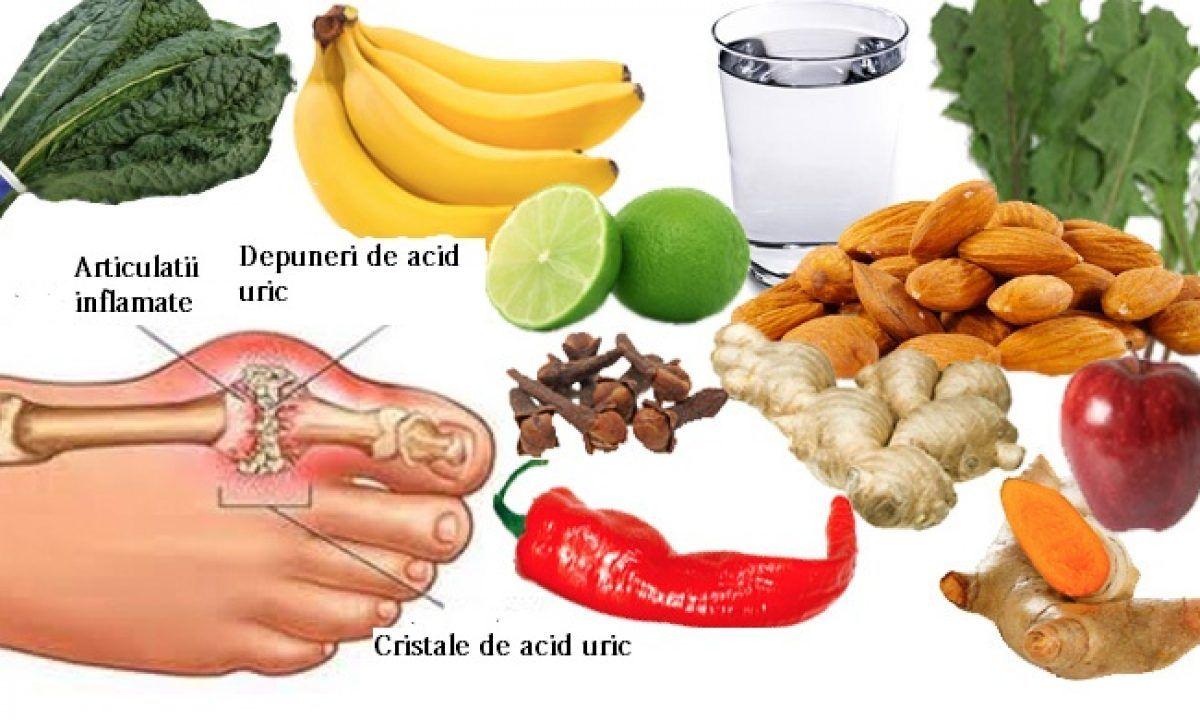 guta regim alimentar tratament)