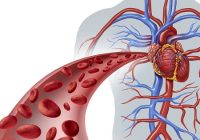 Secretul oamenilor care nu se îmbolnăvesc de inimă, niciodată. Aceste alimente scad nivelul grăsimilor din sânge și previn îmbătrânirea arterelor