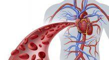 Șase simptome care prevestesc un infarct. Pot apărea cu cu o lună înainte