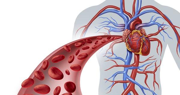 Cum îți dai seama că ești în pericol să faci infarct sau accident vascular? Semnele afecțiunii care duce la blocarea vaselor de sânge