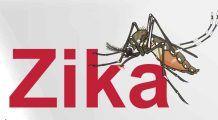 Zika e în România. Care sunt simptomele și cum să te ferești de țânțarii care transmit virusul