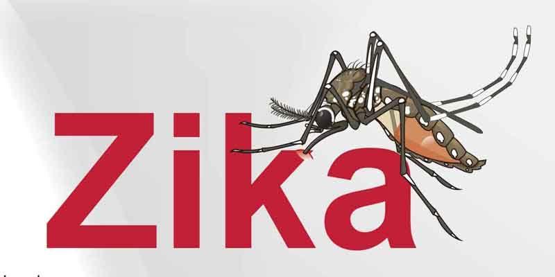 Oamenii de știință au mai descoperit o tulburare a creierului produsă de virusul Zika la adulți
