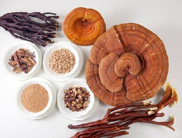 Medicamentul bun la toate 100% natural. Ciuperca-minune care ajuta la vindecarea cancerului și bolilor de inima
