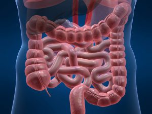 """Prof. dr. Mircea Diculescu: """"Numărul cazurilor de cancer de colon s-a triplat. Cel mai prost obicei alimentar care ne poate îmbolnăvi e…"""""""