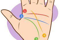 Ghicitul in palma: ce-ti dezvaluie liniile care-ti contureaza destinul