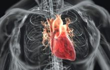 Ce se întâmplă în organism din cauza frigului: Mușchiul inimii este suprasolicitat, pentru că este nevoit să pompeze cu o mai mare dificultate sângele