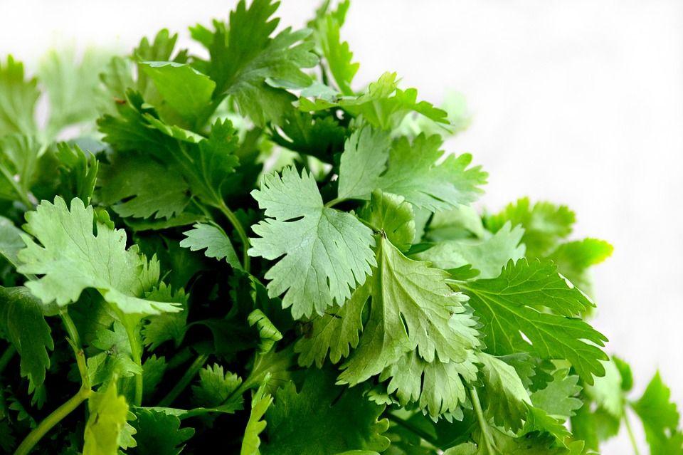 Cinci alimente miraculoase recomandate de fitoterapeutul Valeriu Popa