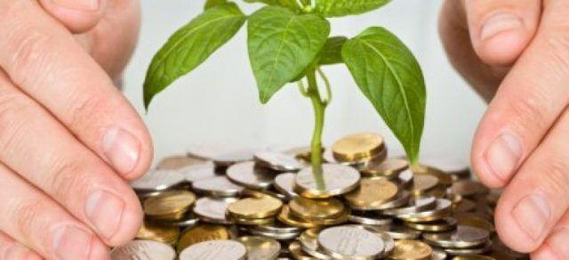 cum să faci bani pe plante)
