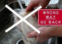 Avertisment britanic: Nu spălaţi carnea de pui înainte de preparare!