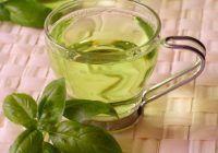 Ceaiul de busuioc, licoarea magică a dacilor care tratează peste 40 de boli și fortifică SISTEMUL IMUNITAR