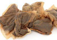 Secretele fabricării celui mai sănătos ceai la plic: Plantele sunt intoxicate chimic, iar șobolanii se pot afla în compoziție