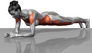 Exercițiul care iți transforma total corpul. Ai nevoie de 5 minute in fiecare zi