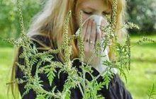 O plantă banală te poate îmbolnăvi grav