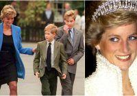 """Ce au vorbit William și Harry, la telefon, cu Prințesa Diana, chiar înainte de moartea sa. """"Acea conversaţie telefonică mi-a rămas profund în minte"""""""