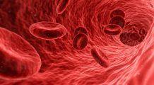 Ce se întâmplă în organism dacă avem CARENȚĂ de FIER. Care sunt PRIMELE simptome