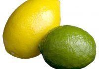 Ce diferență este între LĂMÂIE și LIMETĂ? Care este mai sănătoasă?