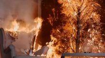 Pomul de Crăciun poate lua foc ușor! Cum evităm un DEZASTRU