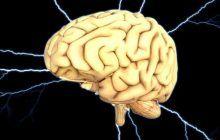 """Neurolog celebru: """"Ne trezim cu tumori și nu știm de unde au venit. Aşa au venit: din ce vorbim, ce gândim, ce simţim şi ce facem"""""""