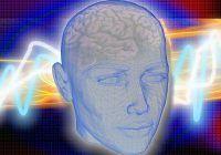 Patru toxine care îți distrug creierul și alimentele în care se găsesc