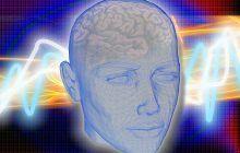 Dieta Minţii. Ce alimente recomandă neurologii americani ca să preveniţi îmbătrânirea creierului şi declinul cognitiv