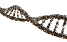Bibliotecile viitorului vor fi stocate pe ADN