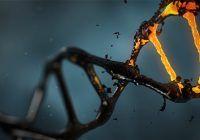 Care este rolul enzimelor în organism și ce boli riști dacă nu ai suficiente